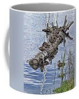 Raft Of Ducks Coffee Mug
