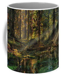 Coffee Mug featuring the photograph Rain Forest Sunbeams by Mary Jo Allen