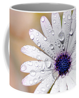 Rain Soaked Daisy Coffee Mug