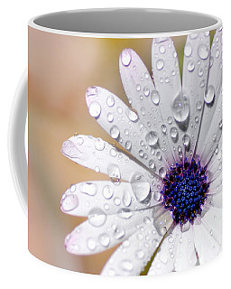 Rain Soaked Daisy Coffee Mug by Kaye Menner