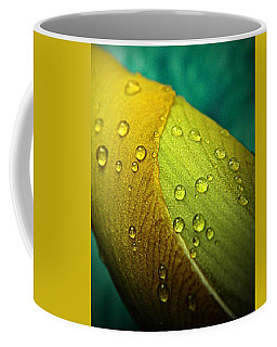 Rain Wrapped Coffee Mug