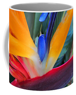 Rainbow Bright Coffee Mug by Kristine Merc