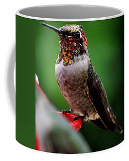 Coffee Mug featuring the photograph Rainbow Colored Male Anna by Jay Milo
