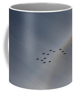 Coffee Mug featuring the photograph Rainbow Squadron by Brian Boyle