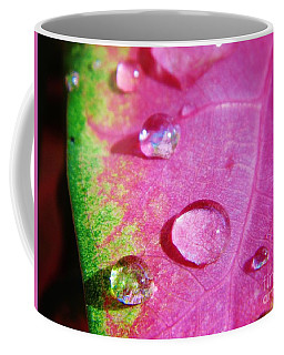 Raindrop On The Leaf Coffee Mug