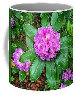 Rainy Rhodo Coffee Mug