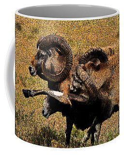 Coffee Mug featuring the photograph Rams At Half-time by Doc Braham
