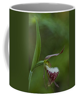 Ram's Head Lady-slipper Coffee Mug