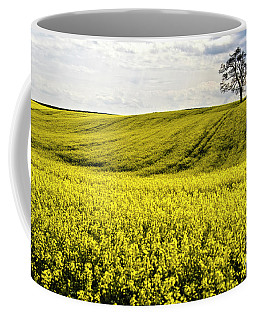 Rape Landscape With Lonely Tree Coffee Mug