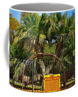 Rare Palm Tree Coffee Mug by Debra Forand