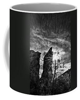 Rays Coffee Mug