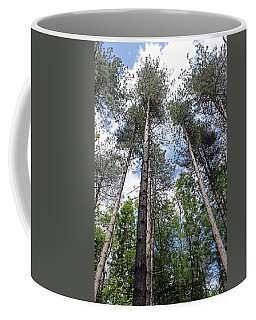 Reach For The Sky Coffee Mug