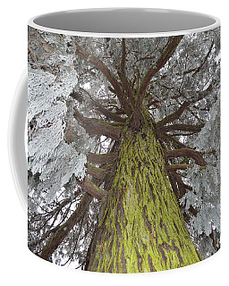 Coffee Mug featuring the photograph Ready For Christmas by Felicia Tica
