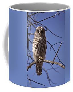 Ready For Takeoff Coffee Mug by Eunice Gibb