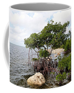 Coffee Mug featuring the photograph Reclamation 9 by Amar Sheow