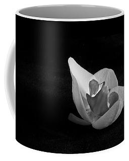 Reclining Orchid Coffee Mug