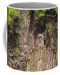 Coffee Mug featuring the photograph Recycling The Old Maple Tree by I'ina Van Lawick