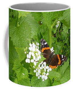 Coffee Mug featuring the photograph Red Admiral Butterfly by Lingfai Leung