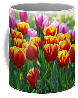 Coffee Mug featuring the photograph Red And Yellow Tulips  by Allen Beatty