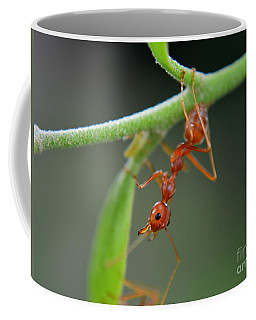 Red Ant Coffee Mug by Michelle Meenawong