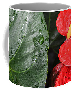 Red Anthurium Flower Coffee Mug by Denise Bird