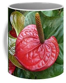 Coffee Mug featuring the photograph Red Anthurium by Patricia Strand