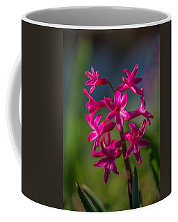 Red Beauty Coffee Mug