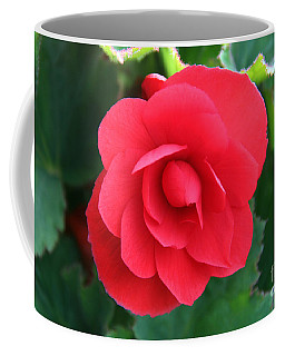 Coffee Mug featuring the photograph Red Begonia by Sergey Lukashin