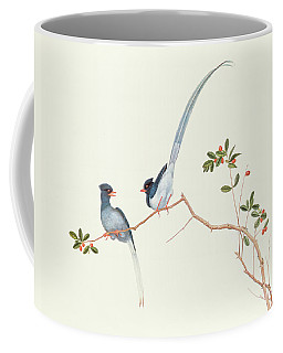 Red Billed Blue Magpies On A Branch With Red Berries Coffee Mug