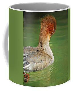 Red Breasted Merganser Coffee Mug