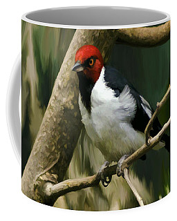 Red-capped Cardinal Coffee Mug by Adam Olsen