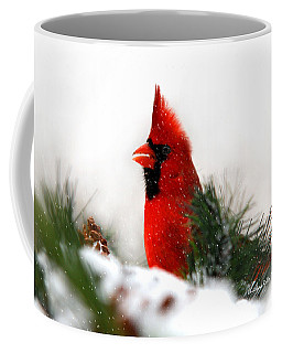 Red Cardinal Coffee Mug