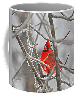 Red Cardinal Northern Bird Coffee Mug