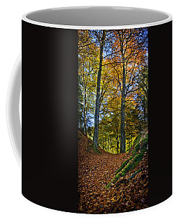 Red Carpet In Reelig Glen During Autumn Coffee Mug