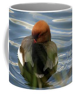 Red-crested Pochard -netta Coffee Mug