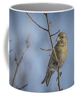 Red Crossbill Female Coffee Mug