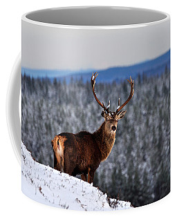 Red Deer Stag Coffee Mug