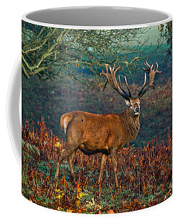 Red Deer Stag In Woodland Coffee Mug