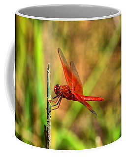 Red Dragon Dreams Coffee Mug