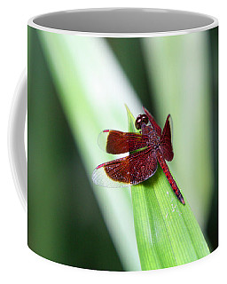 Coffee Mug featuring the photograph Red Dragon by Shoal Hollingsworth