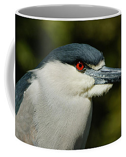 Coffee Mug featuring the photograph Red Eye - Black-crowned Night Heron Portrait by Georgia Mizuleva