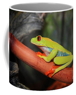 Red Eyed Tree Frog Coffee Mug by Cathy  Beharriell