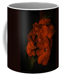 Coffee Mug featuring the photograph Red Flowers In Evening Light by Lucinda Walter