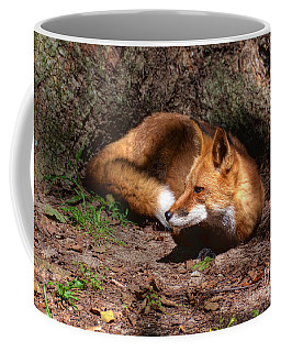 Red Fox Resting Coffee Mug