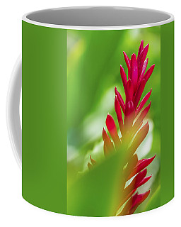 Coffee Mug featuring the photograph Red Ginger Bract by Leigh Anne Meeks