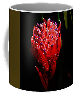 Red Ginger Coffee Mug