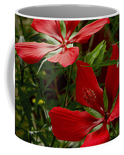 Red Hibiscus Blooms Coffee Mug by James C Thomas