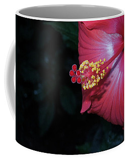 Coffee Mug featuring the photograph Red Hibiscus by Ron Davidson