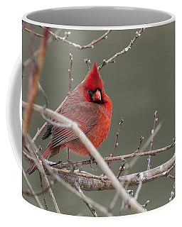 Red In Winter Coffee Mug