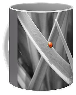 Red Ladybird Coffee Mug